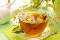 Linden tea in glass Royalty Free Stock Photography