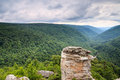Lindy point blackwater canyon west virginia the overlook in falls state park is one of the most famous views in all of the Royalty Free Stock Photography
