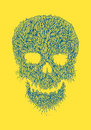 Line art skull illustration hand drawn using detailed style Stock Images