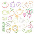 Line art vector graphical fancy food set of fruit and vegetable flat style high quality icon apple lemon pomegranate pineapple Royalty Free Stock Image