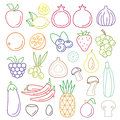 Line art vector graphical fancy food set of fruit and vegetable