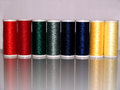 Line of colourful sewing thread reels threads on an isolated background with a relection deep red green blue and yellow tones Stock Images