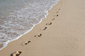 Line of footprints on the beach Royalty Free Stock Photo