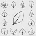 Line leaf icon