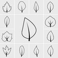 Line leaf icon vector