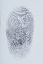 Lines of finger print Royalty Free Stock Photo