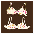 Lingerie a pair of beautiful bras with flowers and hearts Royalty Free Stock Images