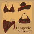 Lingerie shower a beautiful swimsuit with a hat and some text Royalty Free Stock Photos