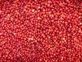 Lingonberries - background Stock Photo