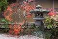 Linterna japonesa y árbol de arce otoñal Foto de archivo