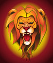 Lion background angry on a colored Royalty Free Stock Photos