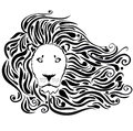Lion black Stock Photography