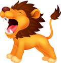Lion cartoon roaring illustration of Royalty Free Stock Photo