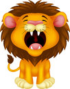 Lion cartoon roaring illustration of Royalty Free Stock Images