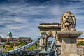 Lion on Chain Bridge in Budapest Royalty Free Stock Photo