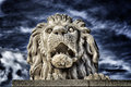 Lion of the Chain Bridge in Budapest Royalty Free Stock Photo