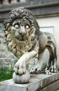 Lion de château de Peles Photo stock