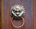 Lion on door Stock Photos