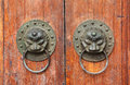 Lion door knobs Royalty Free Stock Images