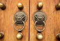 Lion dragon door accent Royalty Free Stock Photo