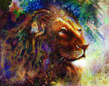 Lion face profile portrait, on colorful abstract feather pattern background Royalty Free Stock Photo