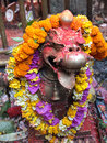 Lion in front of temple nepal there is a fusion hindu buddhist and animistic traditions religion and temples therefore it is not Stock Photos