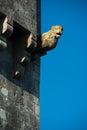 Lion gargoyle a keeps watch over a medieval castle with a stark sky rochelle france june Stock Photos