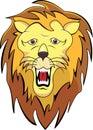 Lion head cartoon Stock Image