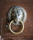 Lion head door knocker golpeador antiguo Imagenes de archivo