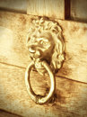 Lion head door knocker on wooden Royalty Free Stock Photos