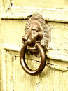 Lion head door knocker on wooden Stock Photo