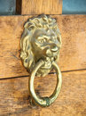 Lion head door knocker on wooden Stock Photography