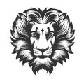 Lion Head drawn in Engraving Style