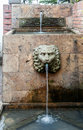 Lion Head Hacienda Santa Barba...