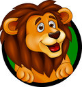 Lion head smiling Royalty Free Stock Photos