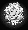 Lion head vector illustration of Stock Images