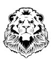Lion head the on a white background Stock Photography