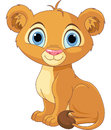 Lion king cub a cute character Royalty Free Stock Photography