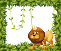 A lion king and the leafy frame illustration of Stock Photos