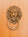 Lion Knock