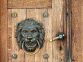 Lion knocker and handle on wooden door