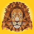 Lion low poly illustration abstract portrait vector Stock Image