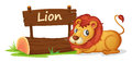 Lion and name plate Royalty Free Stock Photo