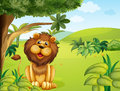 A lion near the big tree illustration of Royalty Free Stock Images
