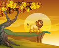 A lion near the mountain cliff illustration of Royalty Free Stock Images