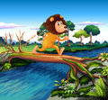 A lion running while crossing the river illustration of Stock Images