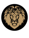 Lion's Head Stock Photos