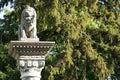 Socha leva v parku v Rusovciach