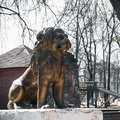 Lion Sculpture in a city park Royalty Free Stock Photo
