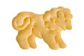 Lion shape cracker Royalty Free Stock Photo